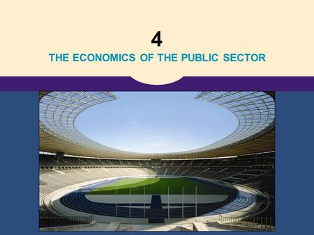4 THE ECONOMICS OF THE PUBLIC SECTOR. Copyright © 2006 Thomson Learning 10 Externalities.
