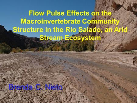 Brenda C. Nieto Flow Pulse Effects on the Macroinvertebrate Community Structure in the Rio Salado, an Arid Stream Ecosystem.