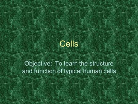 Cells Objective: To learn the structure and function of typical human cells.