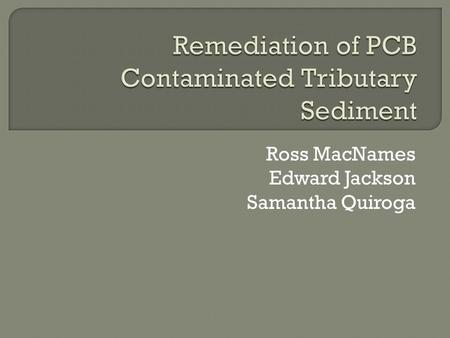 Ross MacNames Edward Jackson Samantha Quiroga.  Elevated levels of Polychlorinated Biphenyls (PCBs) found in sediment of the Little Brazos River 5-100.