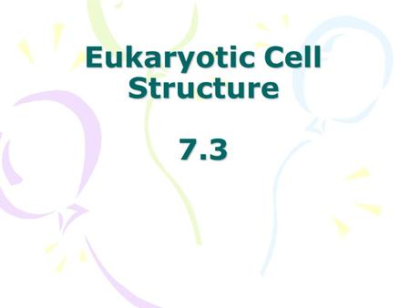 Eukaryotic Cell Structure 7.3 Human Cell Nucleus Nuclear Envelope- double membrane that surrounds the nucleus nuclear pores - regulates what enters.