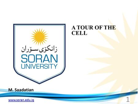 Www.soran.edu.iq M. Saadatian A TOUR OF THE CELL 1.