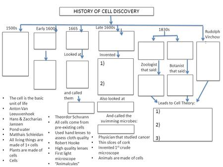 HISTORY OF CELL DISCOVERY 1) 2) 1) 2) 1500s Leads to Cell Theory: 1830s Looked at and called them 1) 2) 3) 1) 2) 3) Physician that studied cancer Thin.