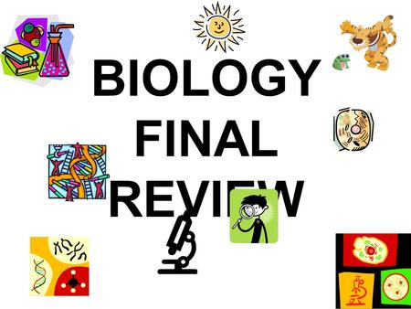 BIOLOGY FINAL REVIEW. What type of biomolecule are enzymes? –Protein.