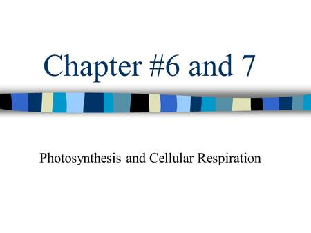 Chapter #6 and 7 Photosynthesis and Cellular Respiration.