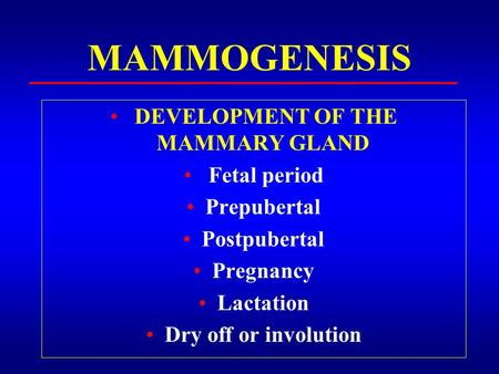 MAMMOGENESIS DEVELOPMENT OF THE MAMMARY GLAND Fetal period Prepubertal Postpubertal Pregnancy Lactation Dry off or involution.