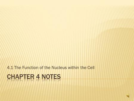 4.1 The Function of the Nucleus within the Cell  Cell membrane – controls the flow of material into and out of the cell  Cell wall (plants) – tough,