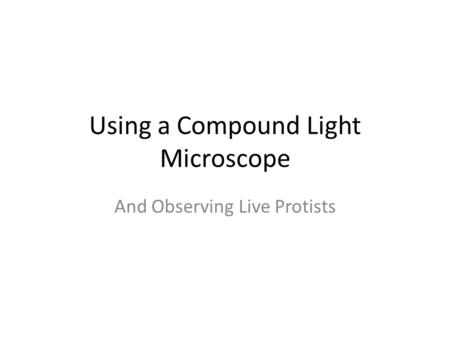 Using a Compound Light Microscope And Observing Live Protists.