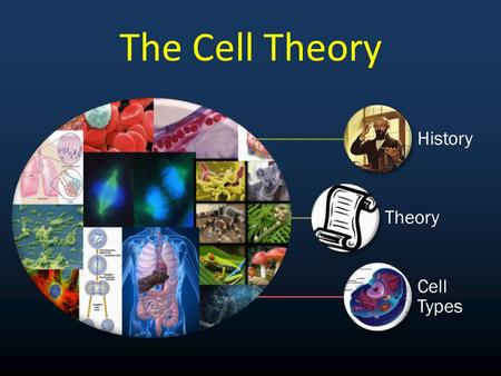 The Cell Theory History Theory Cell Types.