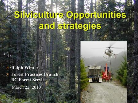 Silviculture Opportunities and strategies ä Ralph Winter ä Forest Practices Branch BC Forest Service March 22, 2010.