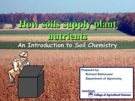 Lecture 10 introduction to some chemical properties of for Introduction of soil