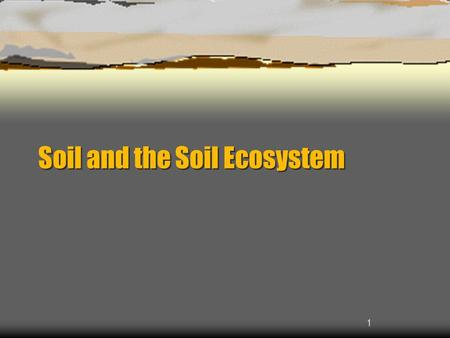 1 Soil and the Soil Ecosystem. 2 Why Study Dirt?  90% of the world's food comes from land based agriculture  22% of the land used for crops, grazing,