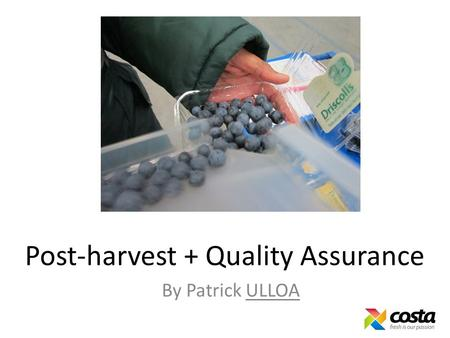 Post-harvest + Quality Assurance By Patrick ULLOA.