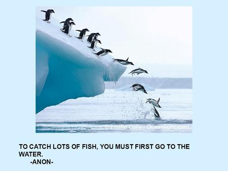 TO CATCH LOTS OF FISH, YOU MUST FIRST GO TO THE WATER. -ANON-