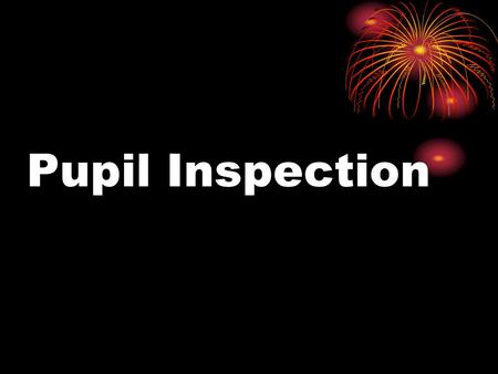 Pupil Inspection. SPRING BROOK SCHOOL Data collection sheet Pupil inspection 2010 Year of pupil interviewed: ___________ Interview carried out by: ___________.
