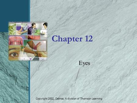 Copyright 2002, Delmar, A division of Thomson Learning Chapter 12 Eyes.