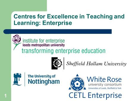1 Centres for Excellence in Teaching and Learning: Enterprise.