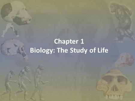 Chapter 1 Biology: The Study of Life. Science -an organized way of using evidence to learn about the natural world -the body of knowledge that scientists.