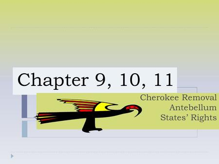 Chapter 9, 10, 11 Cherokee Removal Antebellum States' Rights.