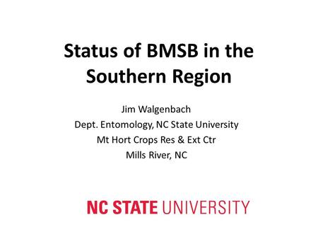 Status of BMSB in the Southern Region Jim Walgenbach Dept. Entomology, NC State University Mt Hort Crops Res & Ext Ctr Mills River, NC.