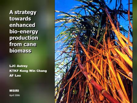 A strategy towards enhanced bio-energy production from cane biomass MSIRI April 2006 LJC Autrey KTKF Kong Win Chang AF Lau.
