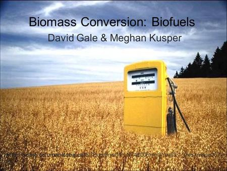 Biomass Conversion: Biofuels David Gale & Meghan Kusper  pg.