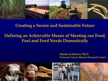 Creating a Secure and Sustainable Future Defining an Achievable Means of Meeting our Food, Fuel and Feed Needs Domestically Martha Schlicher, Ph.D. National.