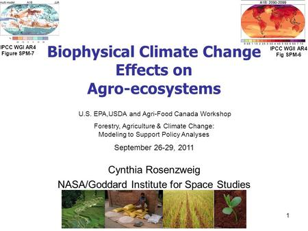 Biophysical Climate Change Effects on Agro-ecosystems Cynthia Rosenzweig NASA/Goddard Institute for Space Studies U.S. EPA,USDA and Agri-Food Canada Workshop.
