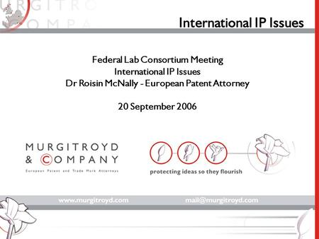 International IP Issues Federal Lab Consortium Meeting International IP Issues Dr Roisin McNally - European Patent Attorney 20 September 2006.