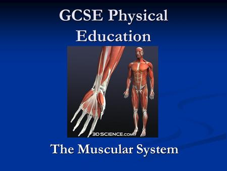 GCSE Physical Education The Muscular System. How does the muscular system produce movement?