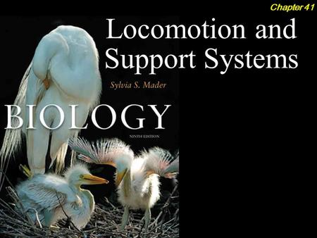 Locomotion and Support Systems Chapter 41. Locomotion and Support Systems 2Outline Diversity of Skeletons  Hydrostatic Skeleton  Exoskeletons  Endoskeletons.