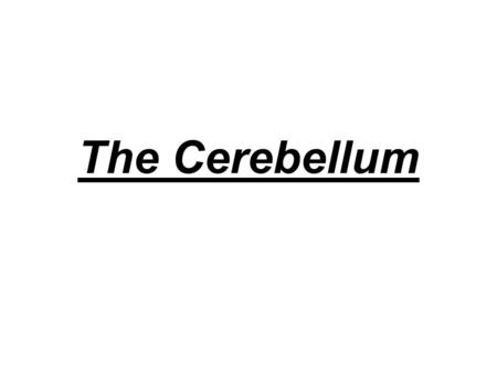 The Cerebellum. –The cerebellar cortex is folded into numerous, small gyri, making it easy to distinguish from the cerebral hemispheres. –The cerebellum.