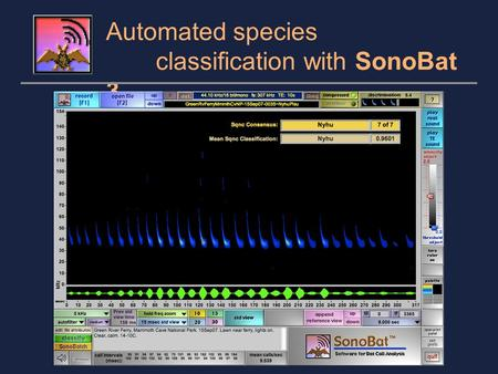 Automated species classification with SonoBat 3. SonoBat uses a decision engine based on the quantitative analysis of approximately 10,000 species- known.