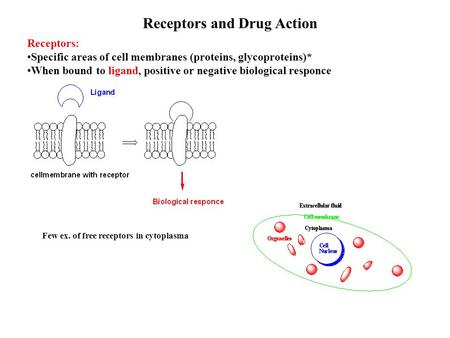 Receptors and Drug Action Receptors: Specific areas of cell membranes (proteins, glycoproteins)* When bound to ligand, positive or negative biological.