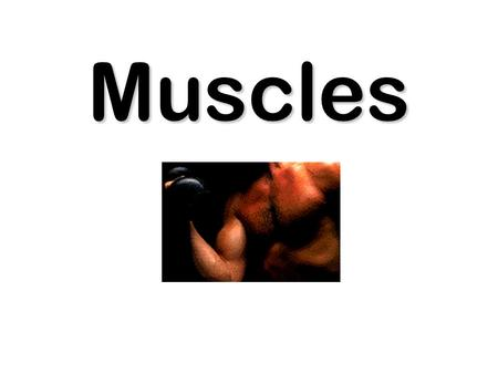 Muscles. Muscles work by contracting. Muscles pull. A pair is needed to move a bone two ways. An antagonistic pair.