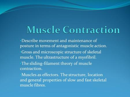 Describe movement and maintenance of posture in terms of antagonistic muscle action. Gross and microscopic structure of skeletal muscle. The ultrastructure.