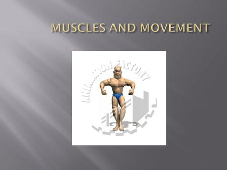 MUSCLES AND MOVEMENT.