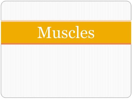 Muscles. 700 skeletal muscles For each muscle: Name Location Origin Insertion Movement.