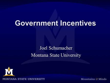 Government Incentives Joel Schumacher Montana State University.