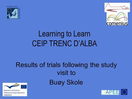 Learning to Learn CEIP TRENC D'ALBA Results of trials following the study visit to Buøy Skole.