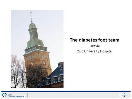 The diabetes foot team Ullevål Oslo University Hospital.