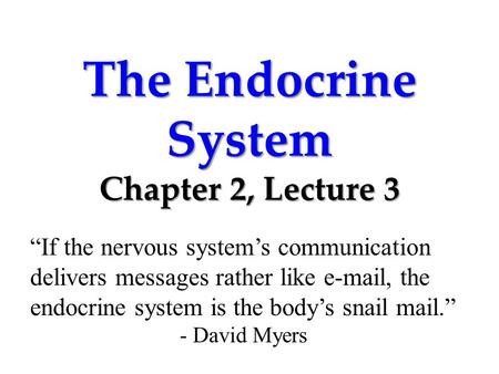 "The Endocrine System Chapter 2, Lecture 3 ""If the nervous system's communication delivers messages rather like e-mail, the endocrine system is the body's."