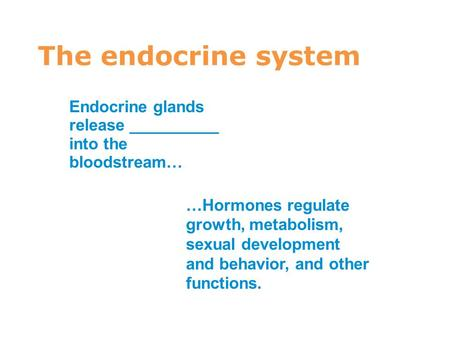 4 The endocrine system Endocrine glands release __________ into the bloodstream… …Hormones regulate growth, metabolism, sexual development and behavior,