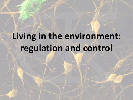Living in the environment: regulation and control.