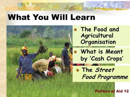 What You Will Learn Politics of Aid 12 The Food and Agricultural Organisation What is Meant by 'Cash Crops' The Street Food Programme.