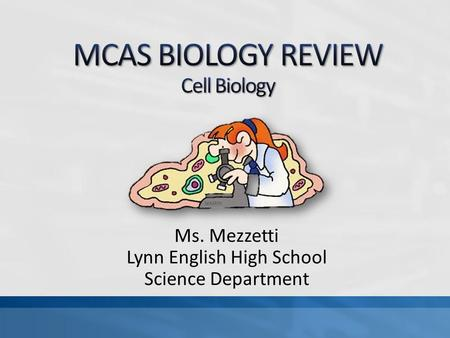Ms. Mezzetti Lynn English High School Science Department.