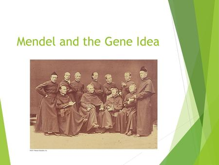 "Mendel and the Gene Idea. What genetic principles account for the passing of traits from parents to offspring?  The ""blending"" hypothesis is the idea."