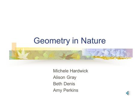 Geometry in Nature Michele Hardwick Alison Gray Beth Denis Amy Perkins.