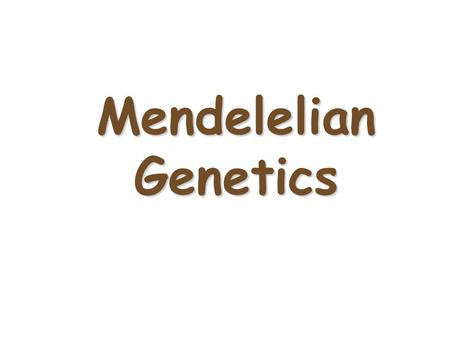 "Mendelelian Genetics Gregor Mendel (1822-1884) Called the ""Father of Genetics Responsible for the laws governing Inheritance of Traits."