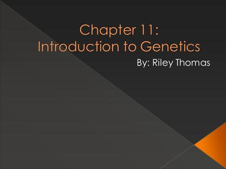 Chapter 11: Introduction to Genetics By: Riley Thomas.